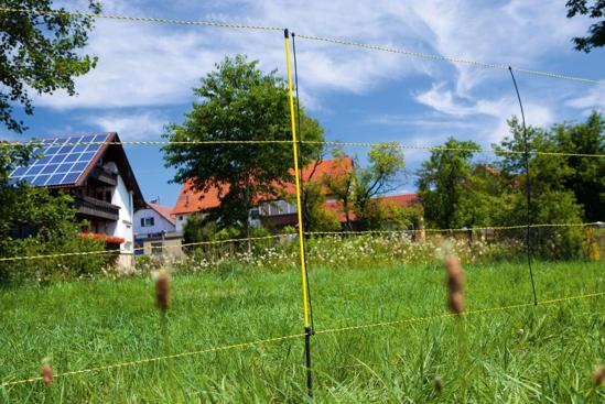 MREŽA za drobnico EasyNet (105 cm -50 m) - enojna konica