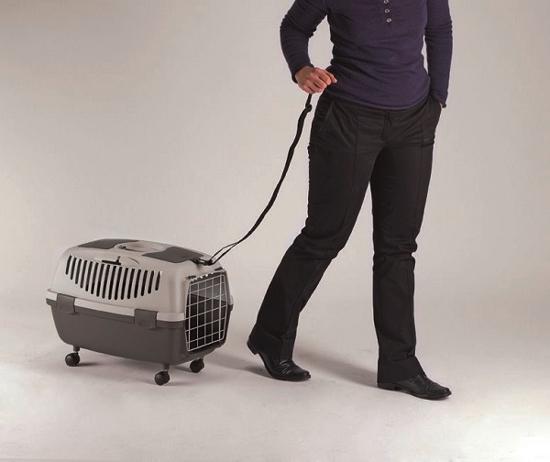 Fotografija izdelka Ramenski pas za transportni boks Gulliver