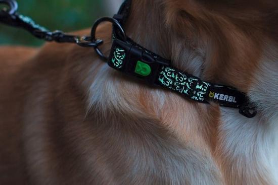 Fotografija izdelka Odsevna ovratnica za psa Shiny Night - L