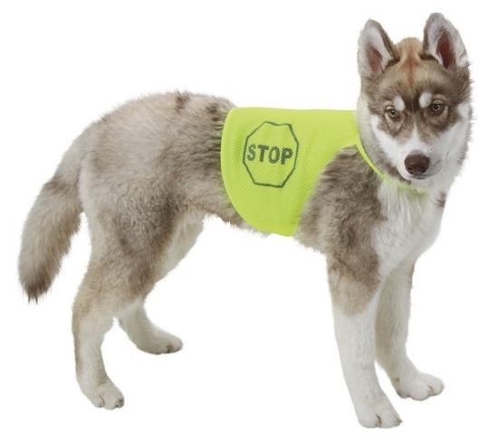 Fotografija izdelka Varnostni jopič za psa - S
