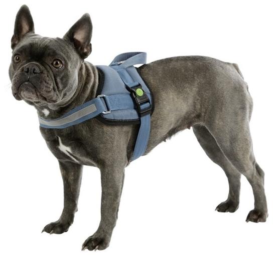 Fotografija izdelka Oprsnica za psa Maestro - L