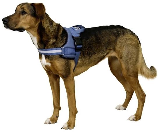 Fotografija izdelka Oprsnica za psa Maestro - XL