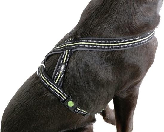 Fotografija izdelka Oprsnica za psa Xenos - L