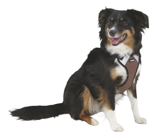 Fotografija izdelka Oprsnica za psa Pulsive - S