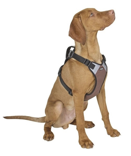 Fotografija izdelka Oprsnica za psa Pulsive - M