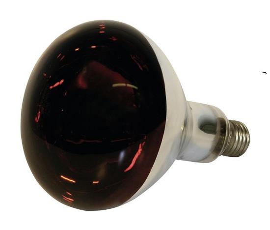 Fotografija izdelka Žarnica infrardeča,  kaljeno steklo, 150W