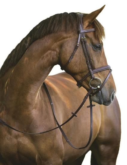Fotografija izdelka Uzda klasična leder, rjava Pony